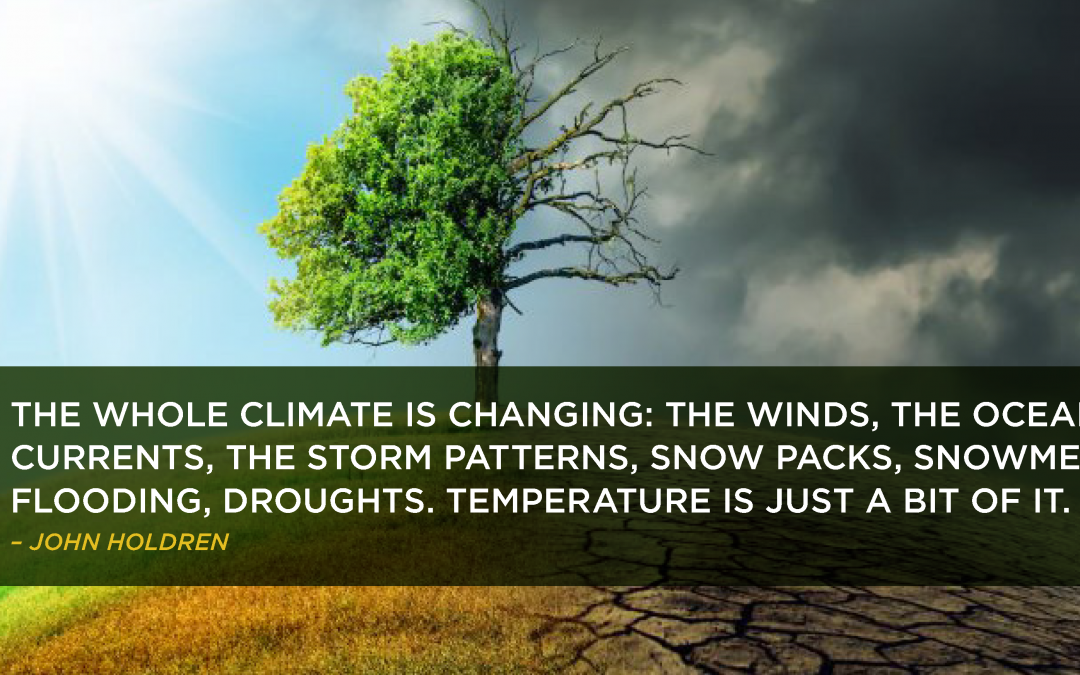 Climate Change Tree