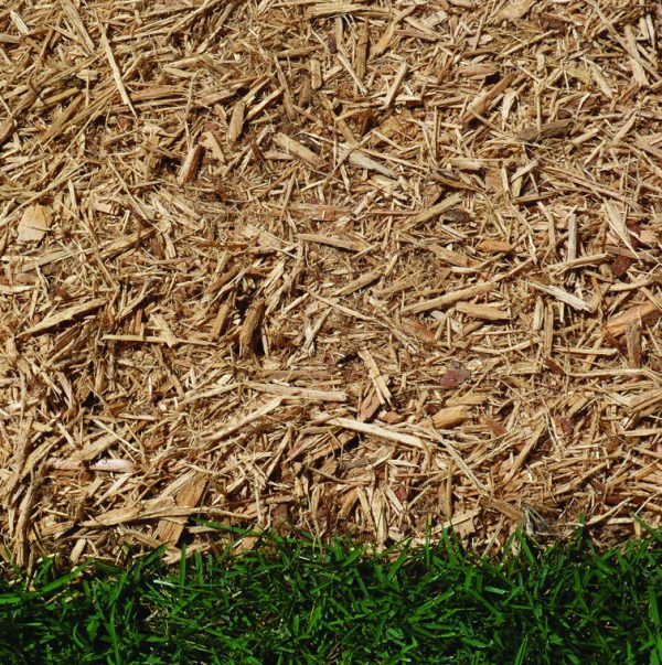 Natural double shredded hardwood mulch in contrast to green grass.